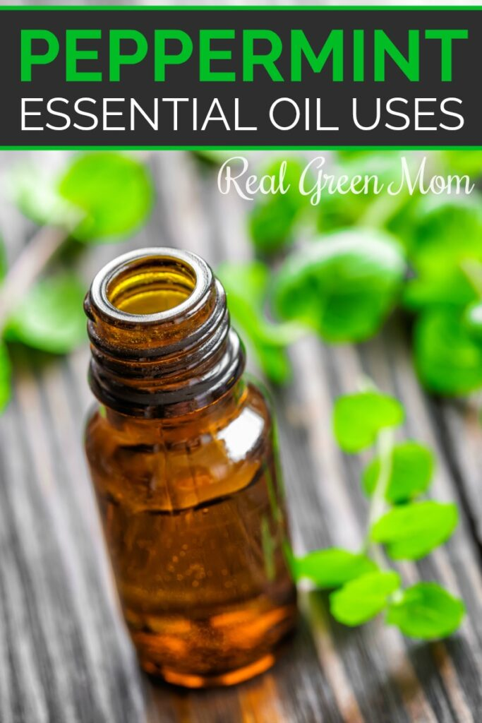 Bottle of peppermint essential oil on table with fresh mint