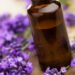 Close up of bottle of lavender essential oil surrounded by purple flowers